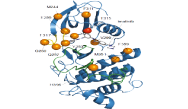 Advances in the Treatment of Chronic Myeloid Leukemia