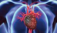 Improving Outcomes of Patients with Heart Failure