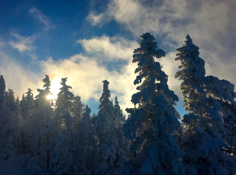 Maine Medical Winter Symposium