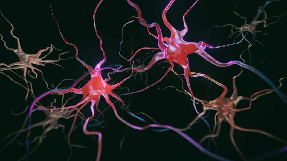Applying New Science to Patient-Focused Treatment Strategies Across the Spectrum of Multiple Sclerosis