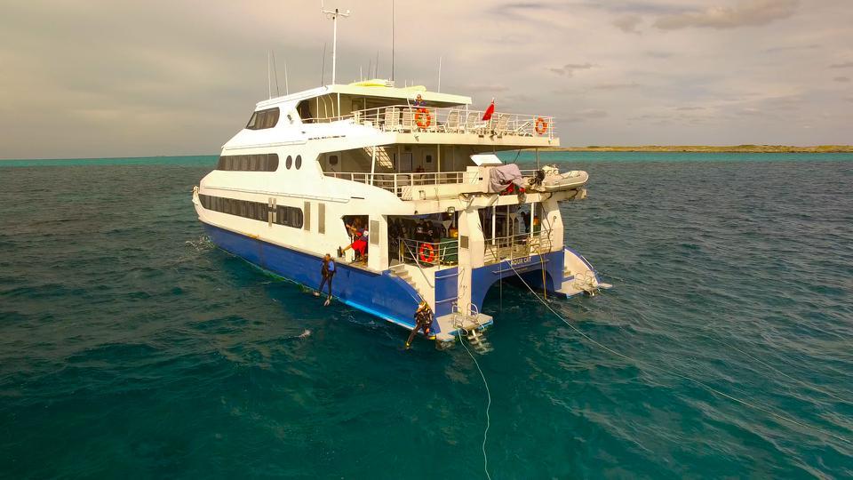 Bahamas LiveAboard Adventure CME