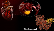 New ERA in the Treatment of Dyslipidemia